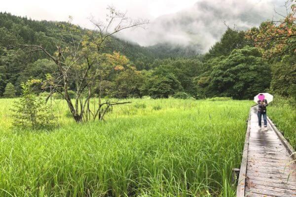 姫川源流自然探勝園の親海湿原